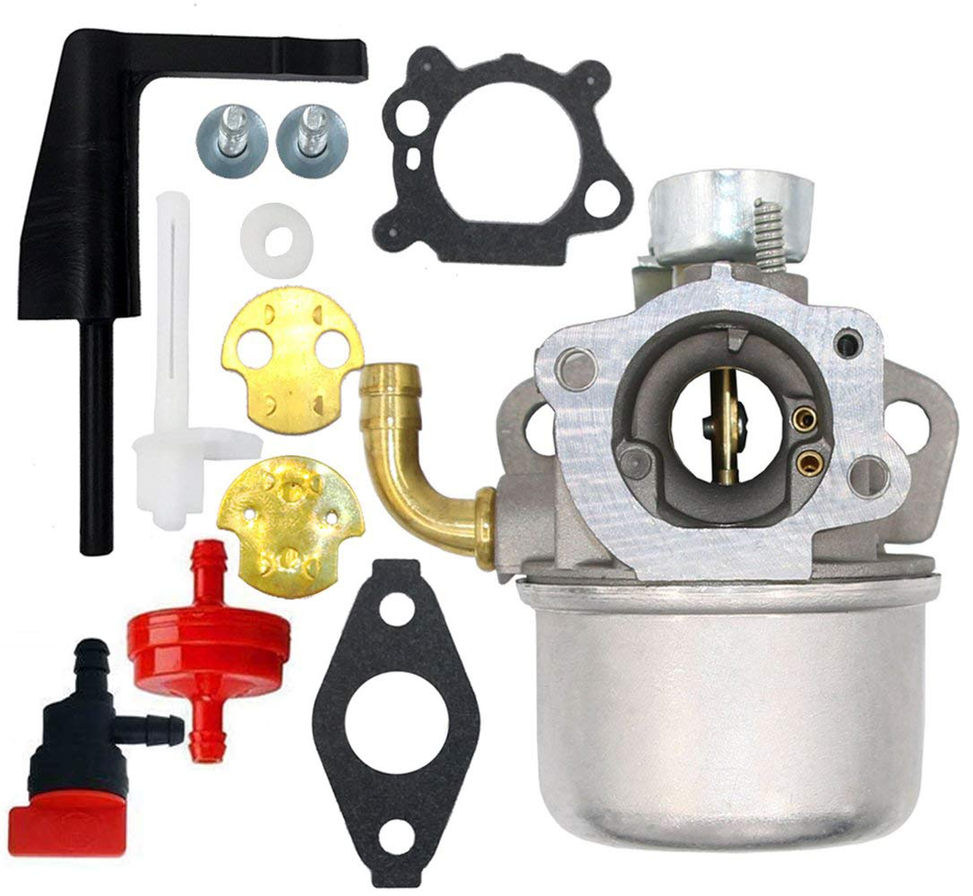 798653 Carburetor for Briggs & Stratton 696981 698860 694508 795069 698859 790180 790290 693865 697354 698474 791991 698810 698857 698478 694174 690046 693751 Craftsman Tiller Intek 791077 Carburetor