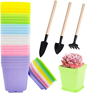 Cshangzei 24 Pack 3 Inch Colorful Square Plastic Plant Pots Small Gardening Plastic Flower Planters with 3 Mini Garden Tools,Flower Pot with Pallet Tray for Succulent Home Garden Decor