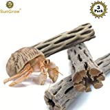 """SunGrow 3 Cholla Wood Pieces for Shrimp - Natural, Thorn-Free 6"""" dried husk of Cholla cactus - Excellent Food Source, Protective Hideout - Organic Decoration by For dwarf shrimp, hermit crabs, pleco"""