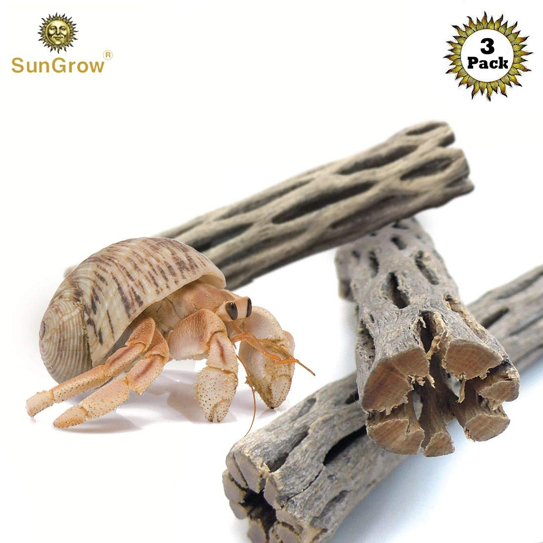 SunGrow 3 Hermit Crab Woods, Chew Toy and Source of Nutrition, Fun and Stimulating Activity for Little Climbers, Keep Hermies Busy & More Active, Long Dried Aquarium Décor Adds Raw Beauty by SunGrow