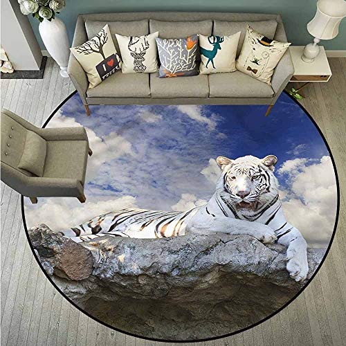 Bedroom Rugs,Tiger,Bengal Feline Hunting,Machine-Washable/Non-Slip,4'7