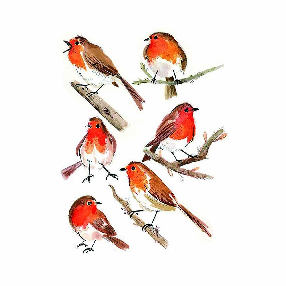 wyuen 5 unidades gorrión Pájaros Mujeres Cuerpo Tatuajes ...