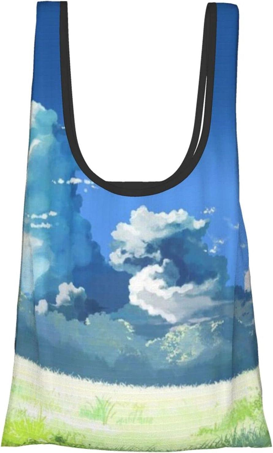 JIANGLAMGHI 검 ONLINEREUSABLE 잡화 가방 FOLDABLE ECO 친절한 핸드백 쇼핑 가방 안에 넣을 수 있는 주머니 빨 수 있는 ECO 친절한 쇼핑백을 보유할 수 있는 무거운 잡화