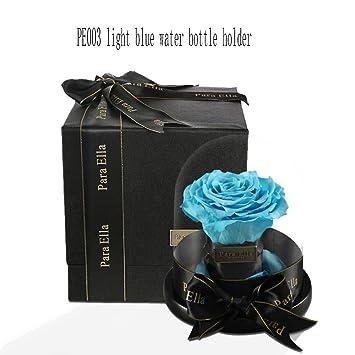 gengyouyuan Rosa Regalo de San Valentin Constelación Regalo de cumpleaños (Porta Botella de Agua Azul Claro PE003): Amazon.es: Hogar