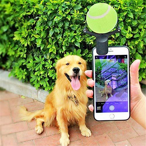 Chenzhen Pelota de Tenis para Perros y Gatos, Accesorio para Fotos de teléfono para Disfraces de Perros pequeños y Grandes: Amazon.es: Productos para ...