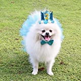 Legendog Dog Birthday Party Supplies, Dog