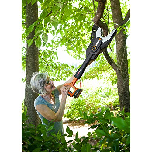 Cordless Electric 20V Lithium Battery Powered Jawsaw  : 61FnN6LOAUL from greenankles.com size 500 x 500 jpeg 85kB