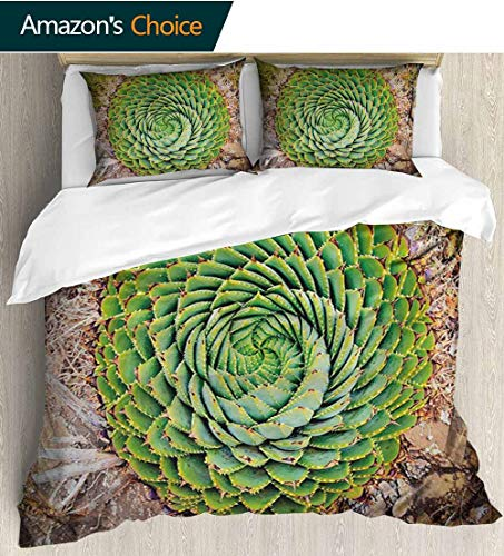 Plant Style 3D Digital Print Bedding Sets,National Flower of Lesotho South of Africa Aloe Polyphylla Spinning Spiral Aloe Vera 100% Cotton Beding Linens for Kids Children(68
