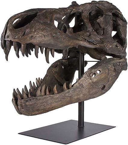 Life size Tyrannosaurus rex fossil skull print
