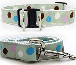 product image for Diva-Dog 'Metro' Dog Collar with Safety Buckle
