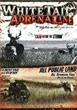 Whitetail Adrenaline Calm Before The Storm - No Public Land Whitetail Deer Hunting