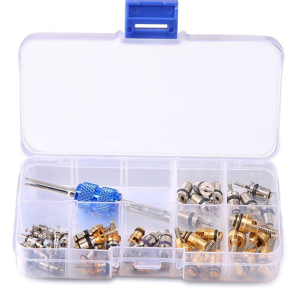 Wefond 39pcs Car Refrigeration A/C Valve Core Kit R12 R134A Automotive Air Conditioning Tire Valve Stem Cores with Removal Tool Assortment