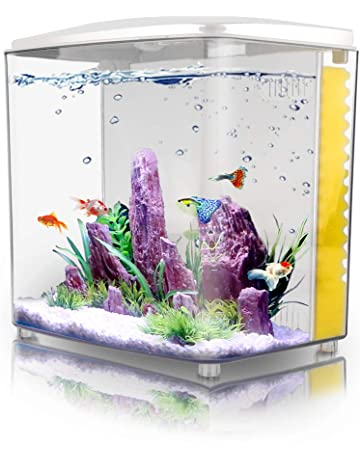 Practical 10 Gallon Aquarium Brand New limited Time Offer Excellent Quality