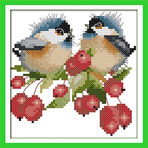 Cross Stitch Embroidery Starter Kit Including 11ct Stamped Aida Pre-Sorted Colored Threads And Tools Cotton Fabric Patterned with Design of The Chatted Birds on Berries (Bird Colored)