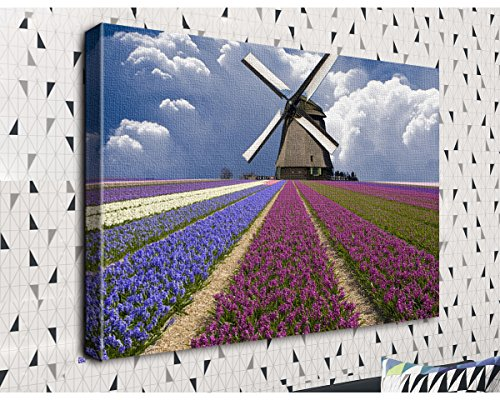 COLORSFORU Field of Hyacinths Beneath a Windmill Custom