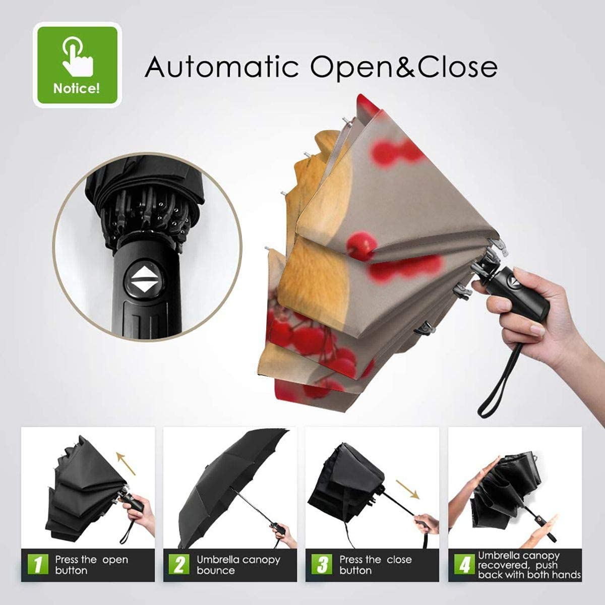Autumn Cardinal Automatic Windproof Travel Umbrella Compact Canopy With Black Glue And UV-resistant Coating