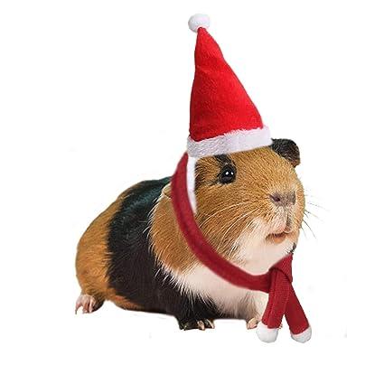 Amazon.com: BWOGUE - Sombrero de Navidad con bufanda y ...