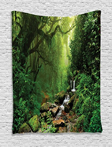 Rainforest Decorations Tapestry Wall Hanging By Ambesonne, Forest in Nepal Footpath Wildlife Spring Plant And Stones Moisture Water Print, Bedroom Living Room Dorm Decor, 60 x 80 Inches, Green Brown