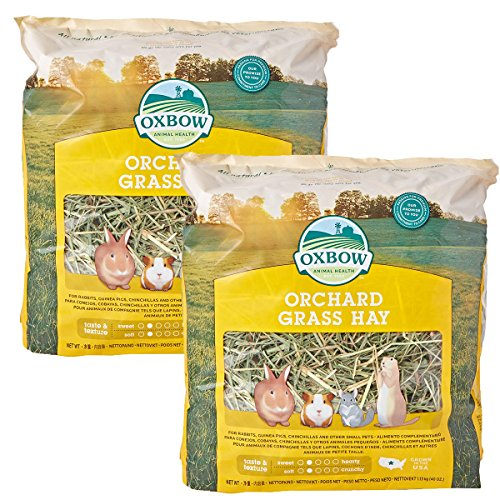 - Oxbow Animal Health Orchard Grass Hay for Pets, 40-Ounce (2 Pack)