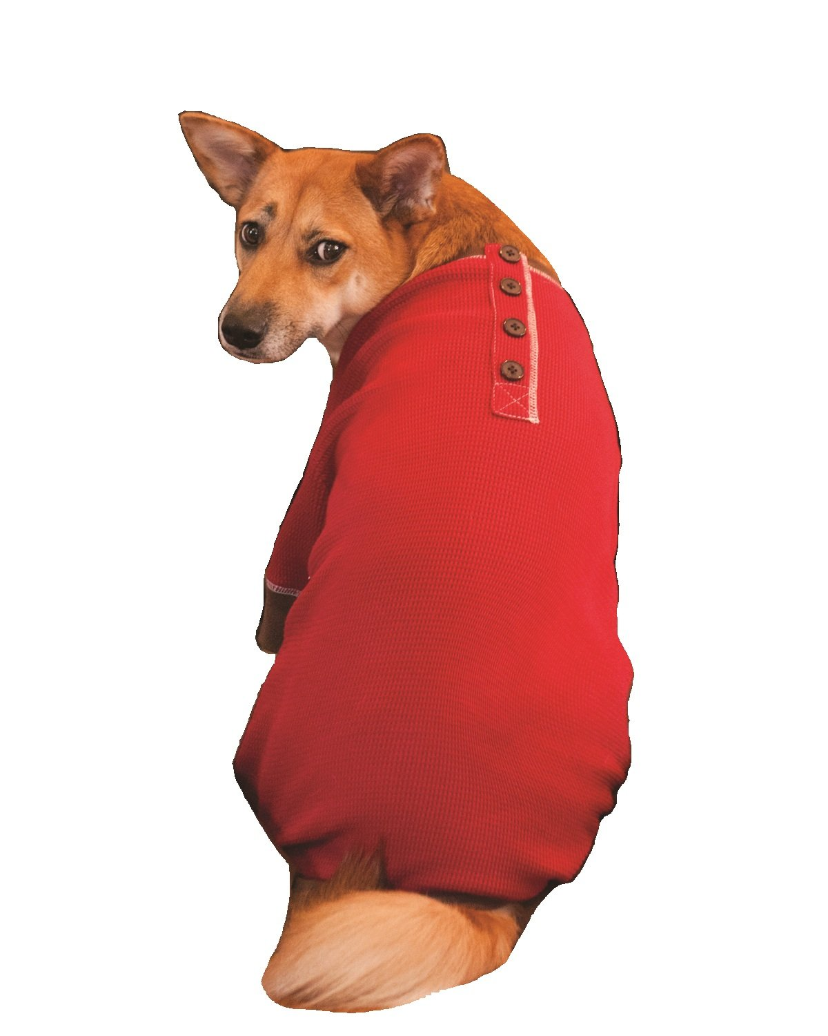 Fashion Pet Outdoor Dog Warm and Toasty Pajamas, Xx-Small, Red 250022