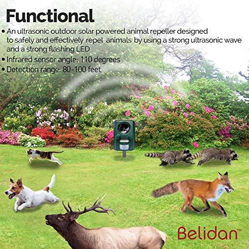 Belidan Animal Repellent Ultrasonic Outdoor - Advanced Animal Repeller -  Deer Cat Dog Skunk Rats Raccoon Repellent - Animal Deterrent Device Solar
