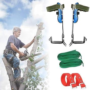 Escalada de herramientas árboles, árbol zapatos que suben de ...