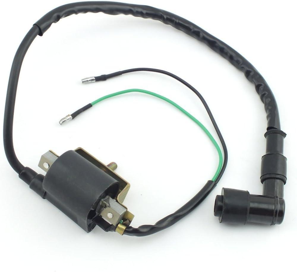 dirt bike coil 2 stroke wiring diagram   38 wiring diagram