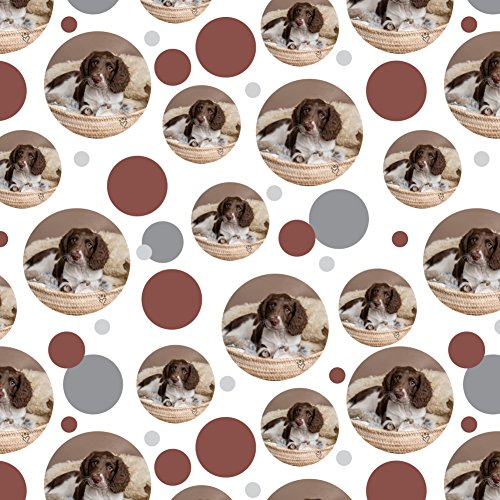 Springer Spaniel Puppy Dog Basket Bed Premium Gift Wrap Wrapping Paper Roll (Gift Dog Puppy Basket)