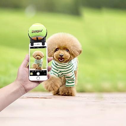 Xiaojuan-pets, Equipo para fotografía de Mascotas Cámara Auxiliar para Mascotas