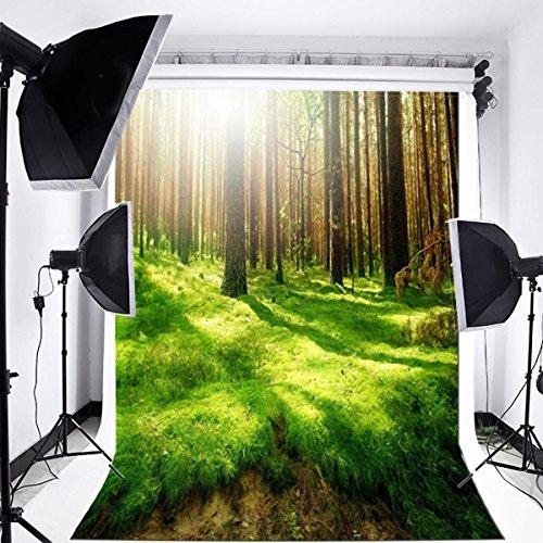 Laeacco Nature Forest View Scenery 3x5ft Vinyl Photography Backdrop 1(w) X1.5(h) m Grove Sunshine Grass Scene Photo Background Studio Props ()