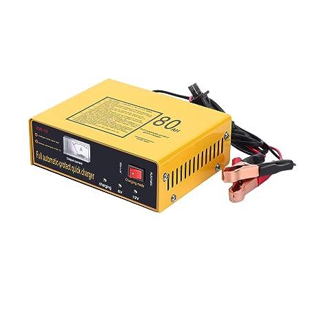 GreatWall - Cargador de batería para Coche (automático, 6 V ...