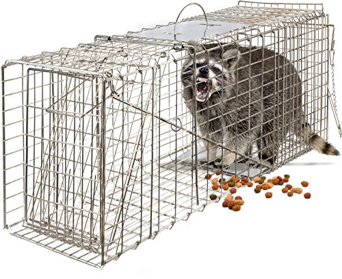 "OxGord Live Animal Trap 32"" X 12"" X 12"" Catch Release Humane Rodent Cage for Rabbits, Stray Cat, Squirrel, Raccoon, Mole, Gopher, Chicken, Opossum (Original Version)"
