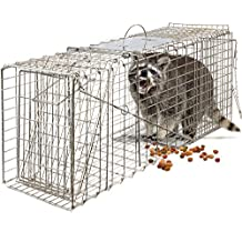 OxGord Live Animal Trap 81 X 30 X 30cm Catch Release Humane Rodent Cage for Rabbits, Stray Cat, Squirrel, Raccoon, Mole, Gopher, Chicken, Opossum, Skunk & Chipmunks Steel Outdoor Professional Grade