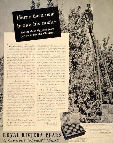 1939 Ad Royal Riviera Pear Bear Creek Harry and David - Original Print Ad