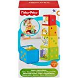 Fisher-Price Stack and Explore Blocks