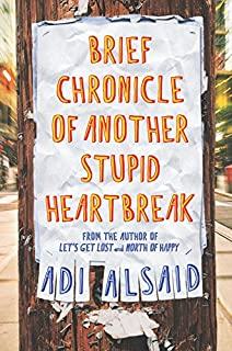 Book Cover: Brief Chronicle of Another Stupid Heartbreak
