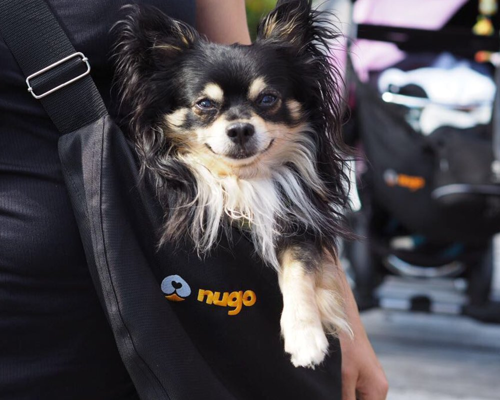 NUGO Handmade Sling Dog Carrier Bag for Small Dogs and Puppies (Black, Salmon warm insert)
