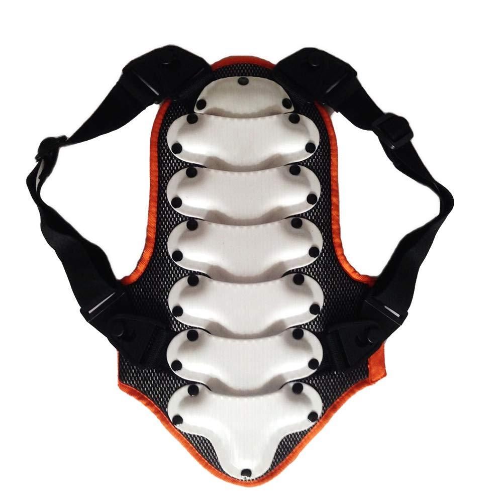 TZTED Rückenprotektor zum Umschnallen effektiver Schutz der Wirbelsäule Protektorplatten Kinder Ski & Snowboard Der Rückenprotektor