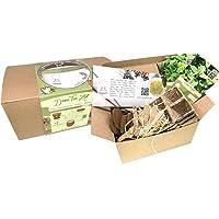 Geschenk Anzuchtset – Bio Tee Kräuter Pflanzset mit 3 Sorten Tee Kräuter Samen, Bio Saatgut für Grüne Minze, Salbei und Zitronenmelisse, Geschenk Set zu jedem Anlass- perfekt verpackt als Tee Geschenk Box, ideales Tee Geschenk für Frauen und Männer