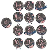 Set of 12 Monthly Baby Stickers for Photos and Bodysuits Girls Chalkboard