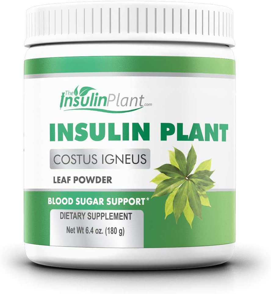 Insulin Plant Leaf Powder (Costus Igneus…