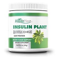 Insulin Plant Leaf Powder (Costus Igneus) - Blood Sugar Support - 180g (2 Month Supply) - TheInsulinPlant.com