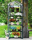 Cheap Green Garden 5 Tier Mini Hot House W Shelves Greenhouse GH005