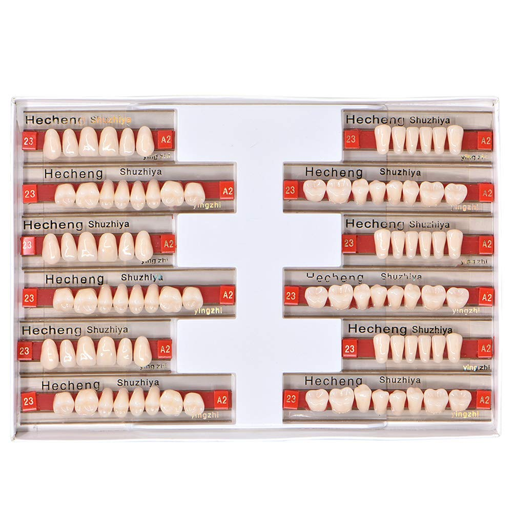 Angzhili 84 Pcs Dental Complete Acrylic Resin Denture False Teeth 3 Sets Synthetic Polymer Resin Denture Teeth 23 Shade A2 Upper + Lower Dental Materials