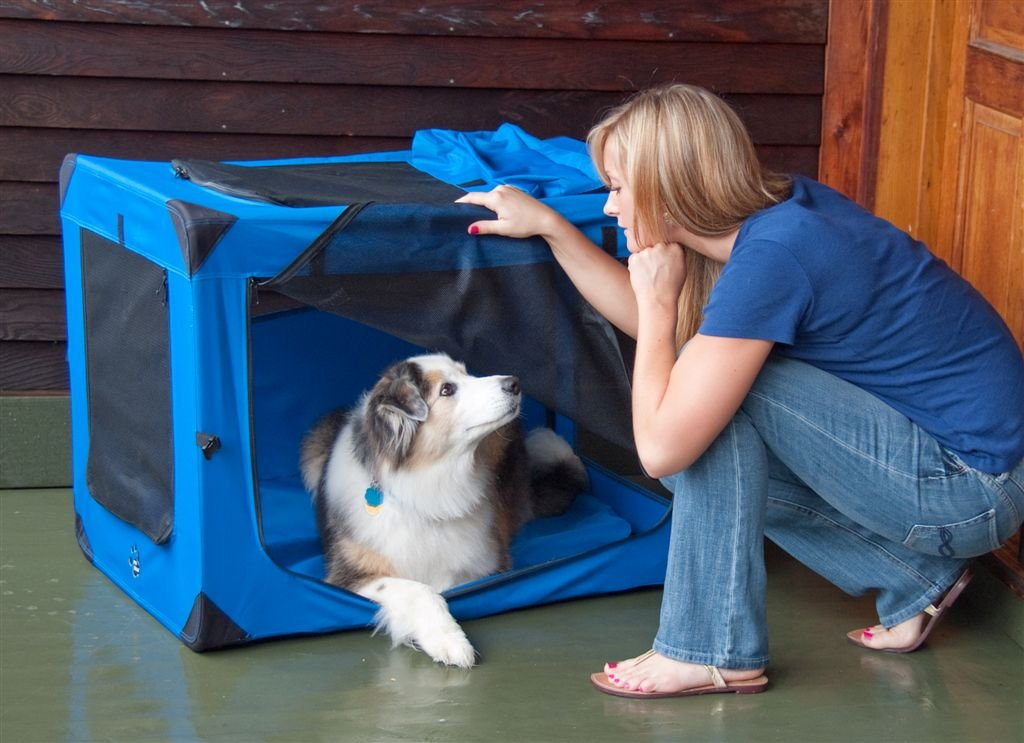 Pet Gear Generation II Deluxe Portable Soft Crate for Cats and Dogs up to 15-Pounds, Ocean Blue Inc. PG5521OB