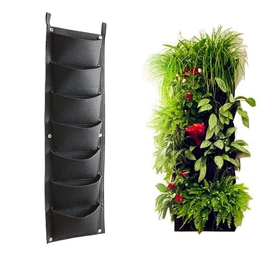 plante a suspendre exterieur plante suspendue exterieur hibiscus suspendu extacrieur jaune. Black Bedroom Furniture Sets. Home Design Ideas