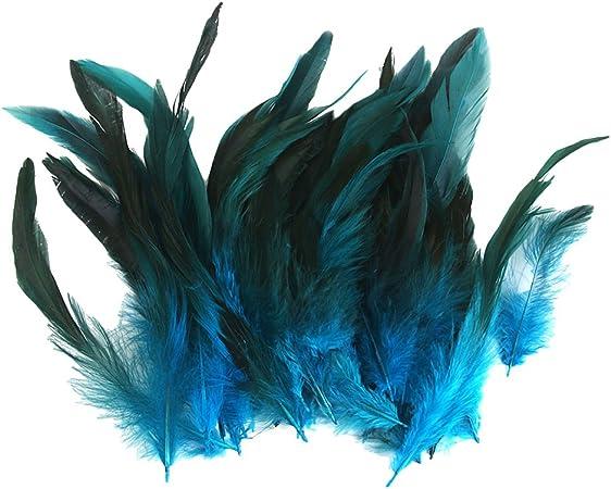 10 cm  pour loisirs créatifs 50 plumes  camaieu naturel  env
