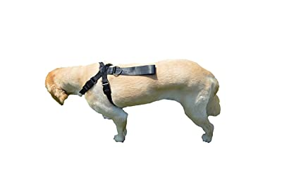 Downtown Pet Supply Premium Pet Dog Harness and Safety Seatbelt Car Restraint
