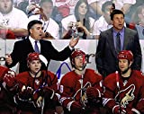 Dave Tippett Signed Photograph