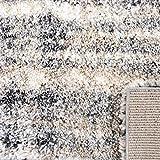 SAFAVIEH Fontana Shag Collection FNT856G Modern